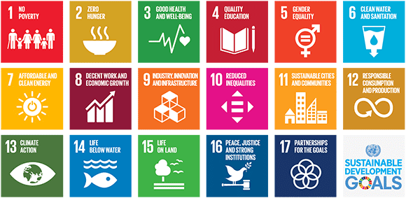 link ai 17 Sustainable Development Goals